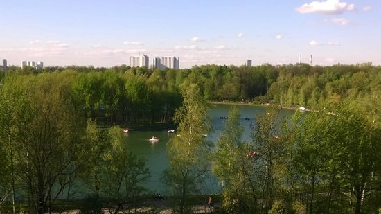 Izmailovsky Park: Вид с колеса