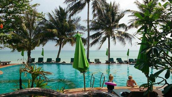 Koh Phangan Dreamland Resort : Живописный вид у бассейна