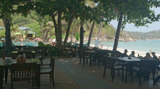 Koh Phangan Dreamland Resort: Вид из ресторана отлея