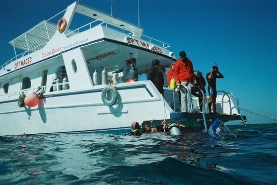 TGI Diving El Gouna: the boat and crew