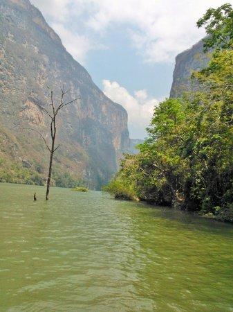Cañón del Sumidero : Imagem vista do barco.
