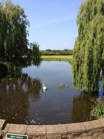 The Mill Hotel: The river and meadows
