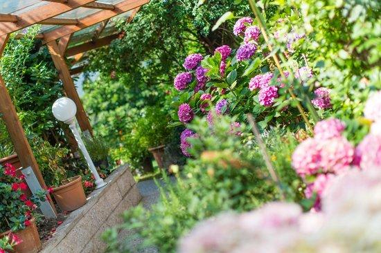 Hotel Bellevue: eine Blumenpracht wohin das Auge schaut