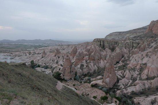 Rose Valley: amazing