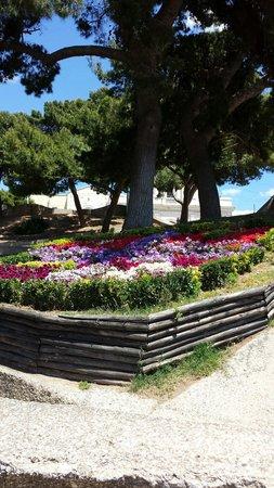 Santuario e Basilica di Bonaria: Giardino