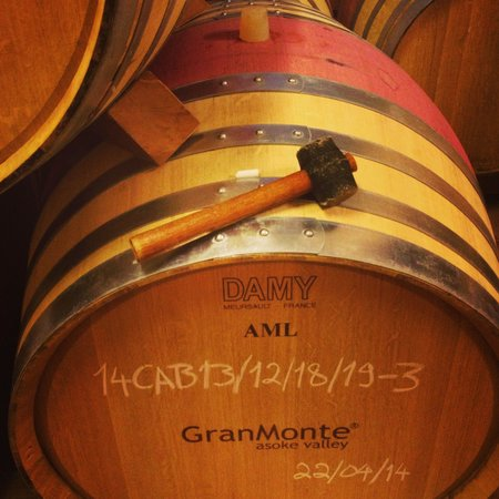 GranMonte Vineyard: Wine barrels