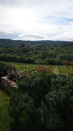 Vistas desde Il Cellese
