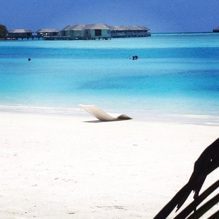 Cinnamon Dhonveli Maldives: My sunlounger patiently waiting for me. Bliss. -Chaaya Dhonveli