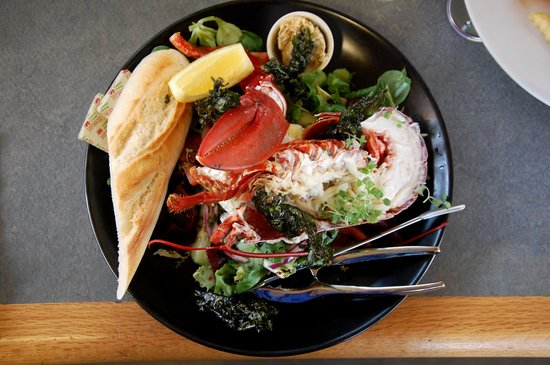 Oriel Y Parc Cafe: lobster salad at Oriel y Parc