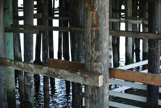 Santa Cruz Wharf : under the wharf