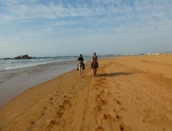 Equi Evasion: Ewig lange Sandstrände...