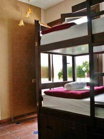 Oasis Backpackers' Hostel Granada: hostel dorm