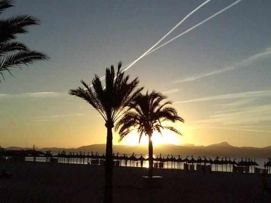 Hotel Pinero Tal: plage el arenal