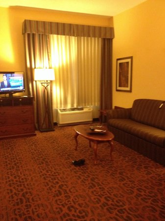 Hampton Inn West Palm Beach Central Airport: Tv is kid of small for the small room but it swivel to the bed side and to the living room area
