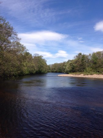 Ardlogie Guest House: Try your hand at fishing for Salmon, Sea Troot & Broonies at the end of the garden ��