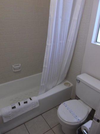 Friendship Inn Torch Lite Lodge: Very clean / Room 252.