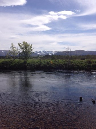 Ardlogie Guest House : Some nice fishing on the Spey at the end of the garden. Permits can be arranged by prior notice?