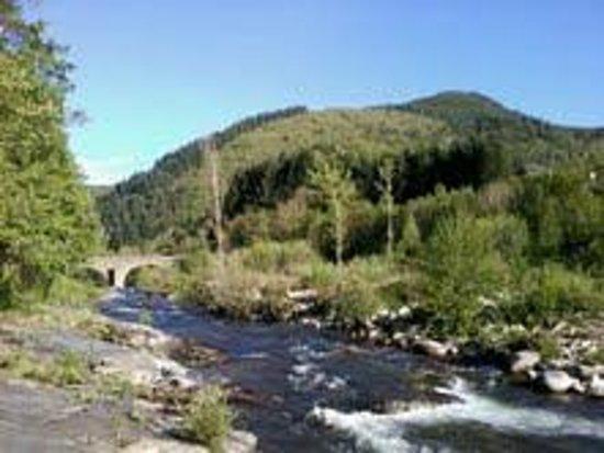 Camping Chantemerle : Vue en contrebas de notre emplacement