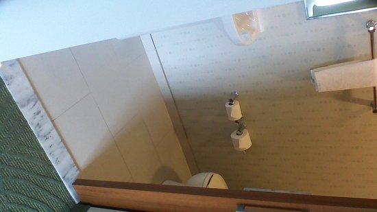 SpringHill Suites Savannah Downtown/Historic District: Bathroom