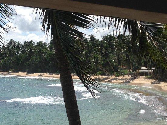 Dickwella Resort & Spa: вид с терассы