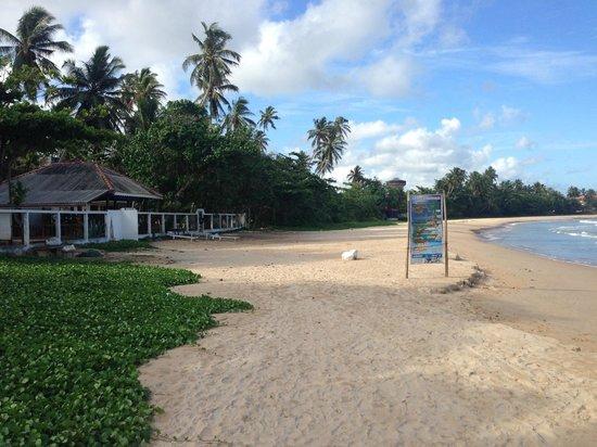 Dickwella Resort & Spa: кафе Маду
