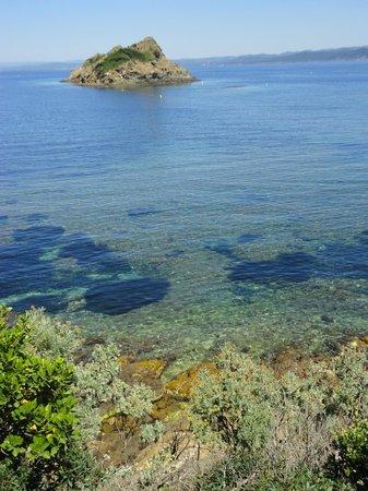 National Park of Port-Cros: vista sul sentiero sottomarino di Plage de la Palud