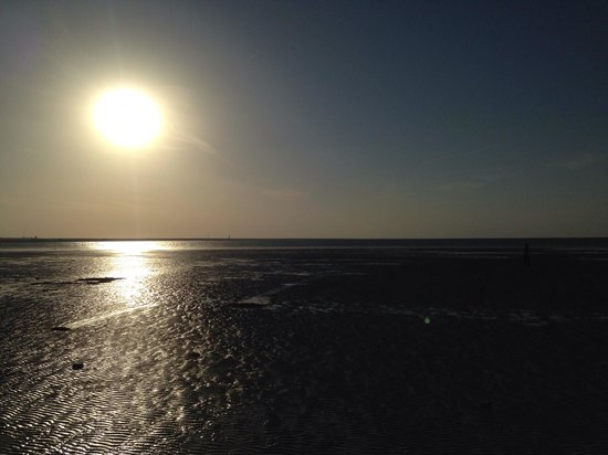 Zekreet Beach