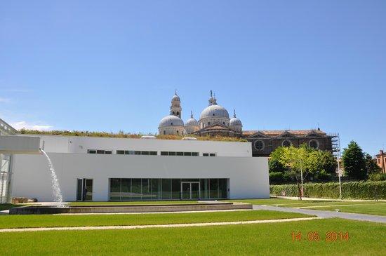 Orto Botanico di Padova: dall'orto botanico verso S.Giustina