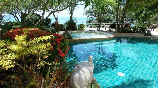 Racha Kiri Resort & Spa: piscine arborée
