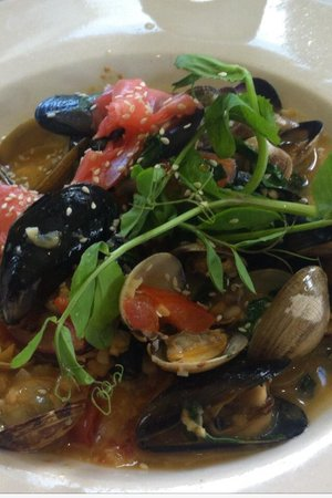 Gordon's on Blueberry Hill: Penn Cove Mussels & Clams