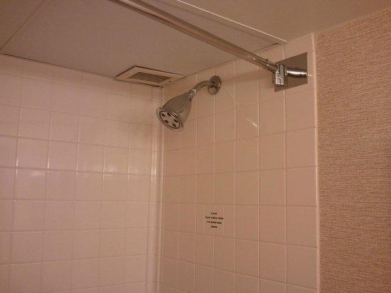 Charleston Marriott Town Center: shower head
