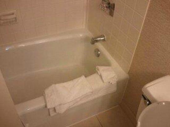 Charleston Marriott Town Center: tub