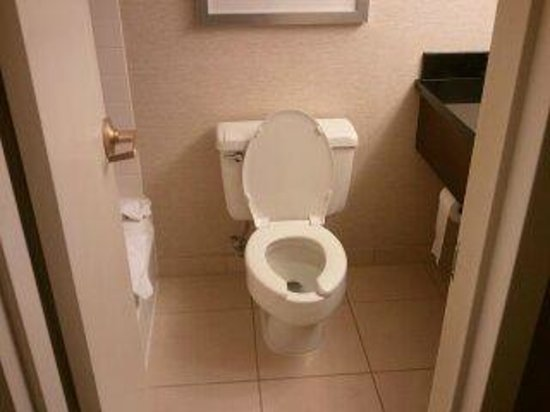 Charleston Marriott Town Center: toliet - about a foot between it and the tub/vanity