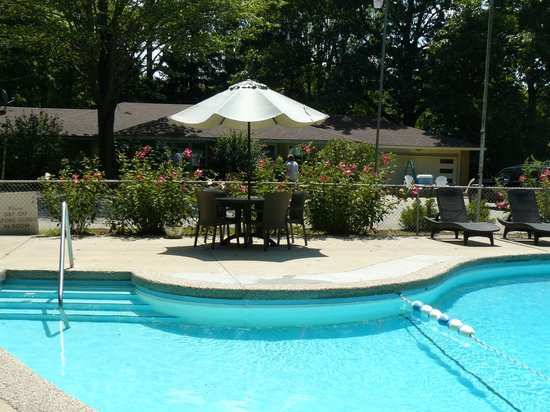 The Saugatuck Resort Motel : Pool