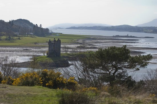 Castle Stalker View Cafe: Fantastic View of Castle Stalker