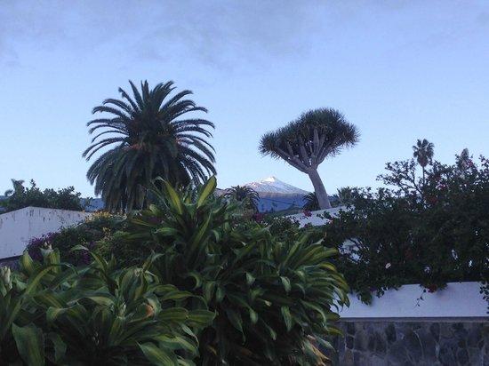 Hotel Perla Tenerife: 3