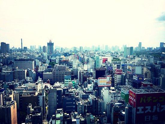 Shinjuku Prince Hotel: spectacular Shinjuku/Kabukicho view from room
