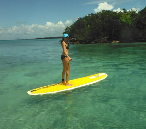 Bayahibe SUP (Stand Up Paddle Boarding): Fun activity for a few hours!!!