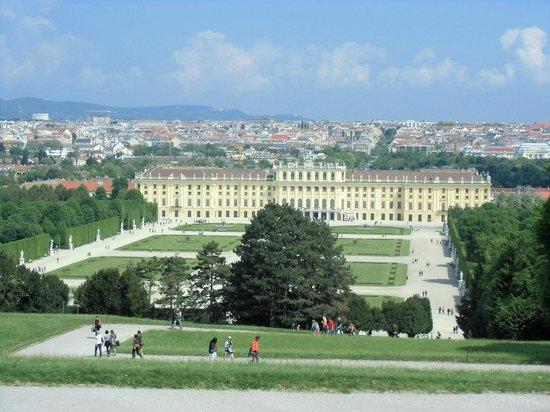 Schloss Schönbrunn: Blick zum Schloss