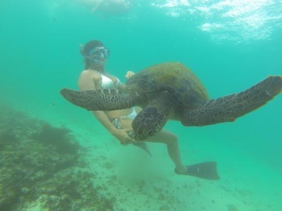 Hotel San Vicente Galapagos: Magiche Galapagos !!!