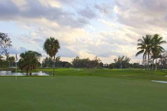 Shula's Golf Club: #15 green