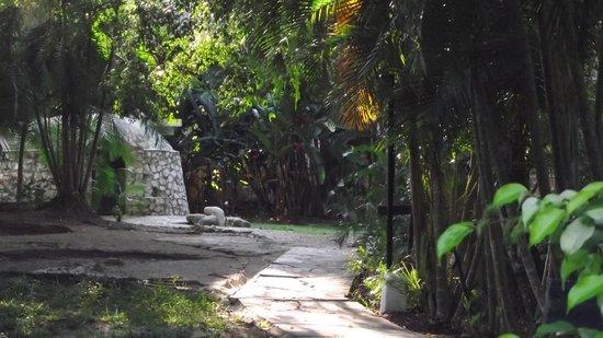 Hotel Plaza Palenque: Instalaciones acordes al tipo de ambiente clima de la región