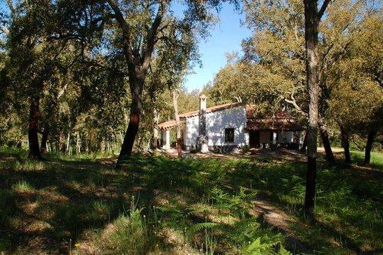 Valle del Arroyo Casas Rurales - Bed & Breakfast: Casita del Corcho