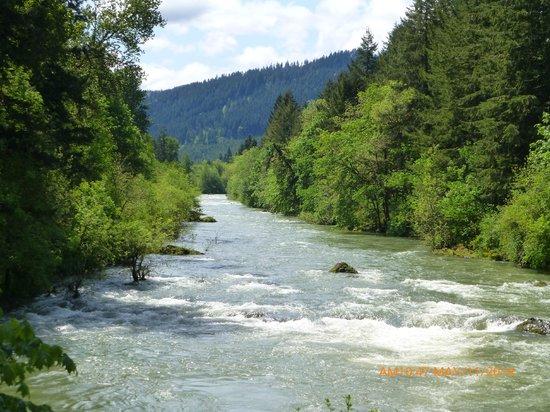 Row River Trail: Row River