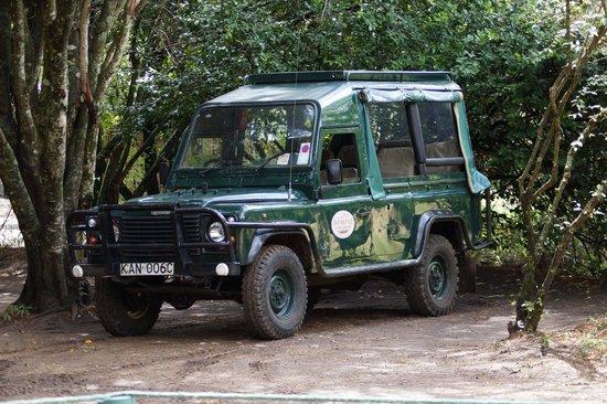 Mara Intrepids Luxury Tented Camp: sehr gepflegte Safari-Jeeps