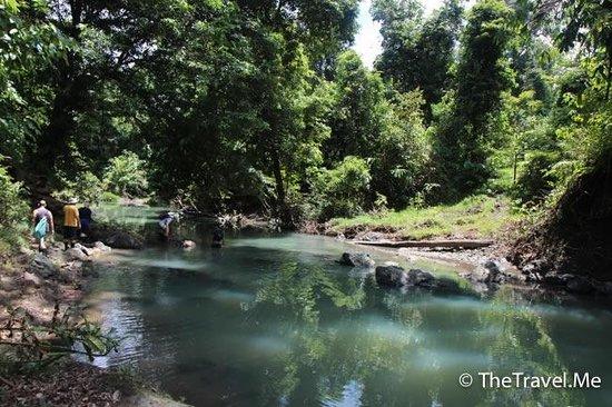 Tabin Wildlife Reserve: 塔繽保護區的溪流