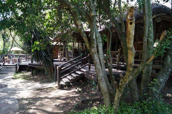 Mara Intrepids Luxury Tented Camp: Klein, aber wirklich alles da. Sogar freies Wlan!!