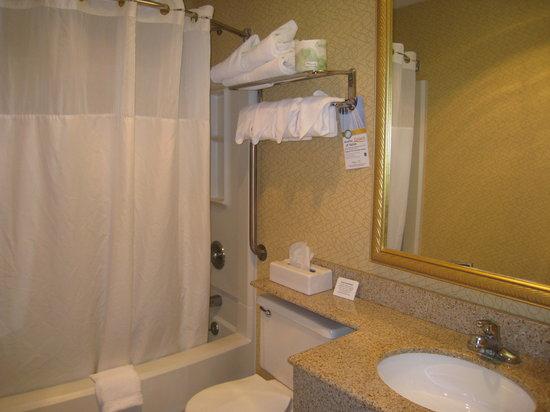 Quality Inn Hyde Park: Bathroom
