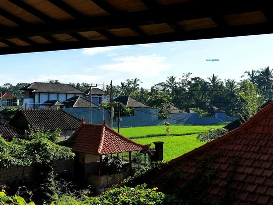 Junjungan Ubud Hotel and Spa: The view from the terrace