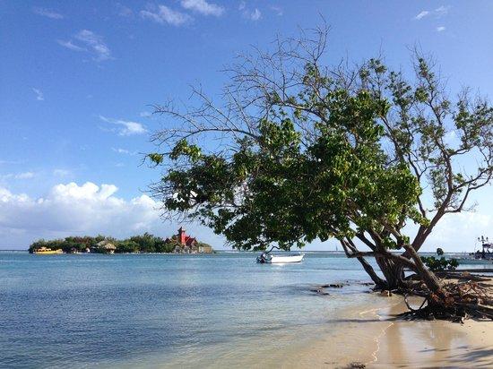 Hotel Riu Palace Jamaica : riu beach